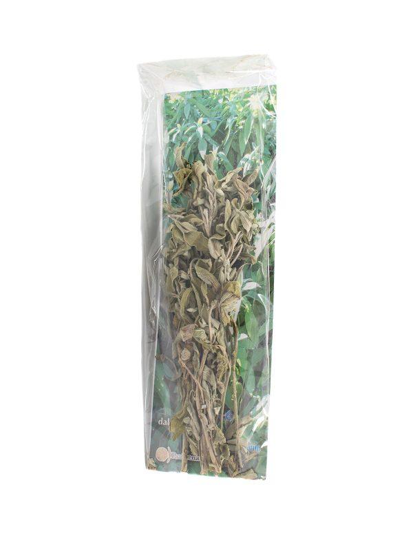 Organic Sage - Pantry - Buon'Italia